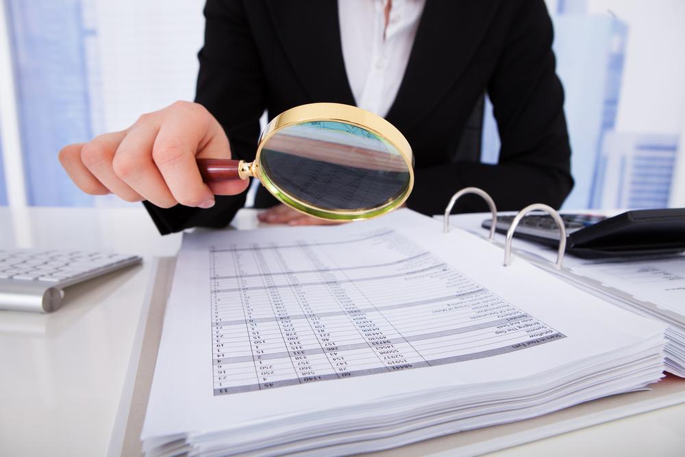 Adóellenőrzés - túl - élése